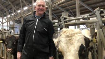 Styreleder Jan Ole Mellby i Geno sammen med 11078 Gopollen som ser ut til å overta som en av de mest etterspurte på eksportmarkedet for NRF (Norsk Rødt Fe). Foto: Mari Bjørke, Geno.