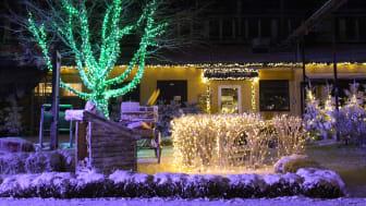 Så snart mörkret smyger på garanterar vi en magisk känsla av jul hos alla som besöker oss här i Kosta. Juleljusen kommer lysa och sprida glädje ända fram till årets slut.