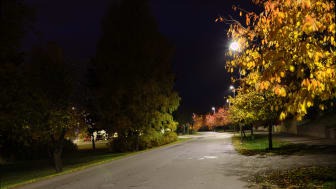 Forskning pågår om belysningens ekologiska effekter på djur och natur.