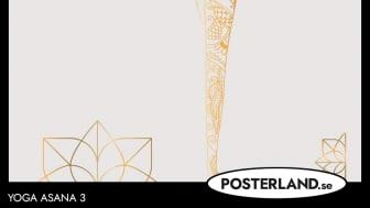 Yoga Asana Poster
