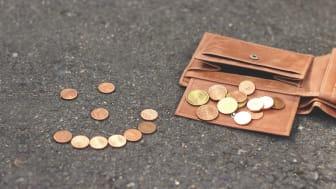 Auch das Geld entscheidet über die Studien- und Berufswahl