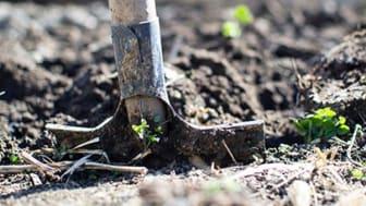 Tömning av trädgårdsavfall