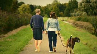 När semestern börjar närma sig slutet - några tips och tankar från Familjerådgivaren