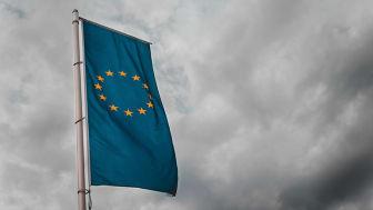 Sedan det svenska inträdet 1995 har bara Europeiska socialfonden, en av EU:s cirka 200 olika fonder och program, finansierat cirka 100 000 projekt i Sverige.