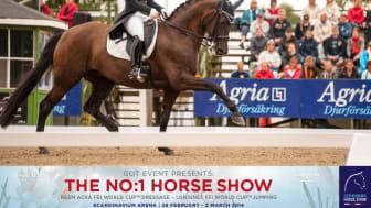 Gothenburg Horse Show - Svenska dressyrtruppen laddar för Göteborg