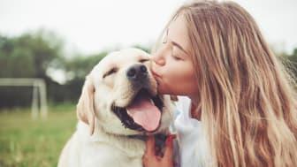 Ohjelmaan vuonna 2020 mukaan päässyt suomalainen OneMind Dogs auttaa omistajia ymmärtämään paremmin koiransa näkökulmaa.