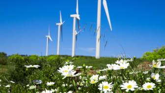 PKA investerer milliardbeløb i grønne obligationer