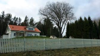 Måla rätt så slipper du göra om jobbet! En av fyra ska bygga eller måla staket i år, enligt byggföretaget Hornbach.