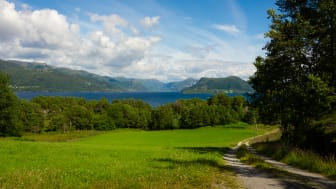 Telenor to launch first 5G pilot in Western Norway