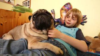 Junge mit Hund 2