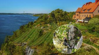 Oanad tillväxt på Högberga Gård