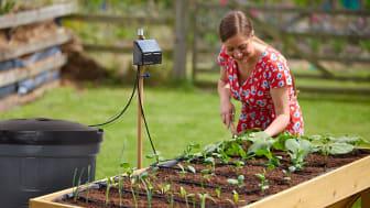 Solcellsdrivna droppbevattningssystemet som gör jobbet åt dig!