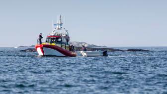 Bildtext: Förra sommaren ökade Sjöräddningssällskapets uppdrag med 52 %.  Foto: Mats Ryde/Sjöräddningssällskapet