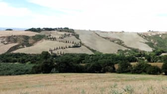 The Tuscany. An artists view of an ancient landscape.