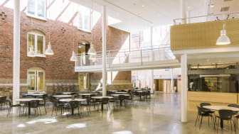 LUX, Lunds universitet