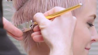 Marc A. Seubert - Gold-Trainer calligraphy cut® aus Nürnberg