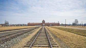 Förintelselägret Auschwitz-Birkenau som befriades den 27 januari 1945. Foto: Colourbox