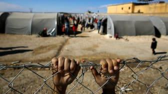 Världen: Världens ledare blundar för flyktingkrisen