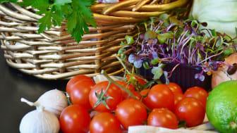 Vegetables freigestellt_RitaE auf Pixabay