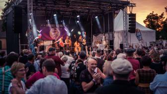Ausgelassene Stimmung und Bühnen-Performance beim Firebirds Festival - Foto: THE FIREBIRDS