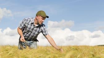 Jordbrukarstöden skapar förutsättningar för ett konkurrenskraftigt lantbruk.  Foto: Scandinav bildbyrå