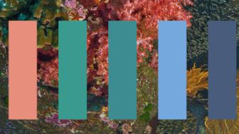 Bildtext: Färgpalett för trenden Aqua marine