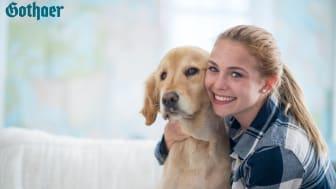 Ein Hund zählt für die meisten Tierhalter als Familienmitglied – deshalb soll er auch die beste Krankenversorgung erhalten, wenn es ihm einmal schlecht geht.
