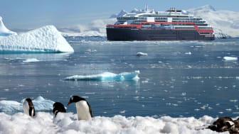 Antarctica_AM_Pinguins©Hurtigruten