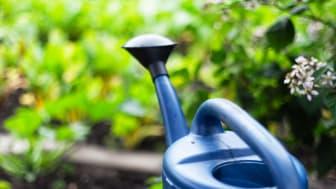 Nematoder - Giftfri bekämpning mot skadedjur i trädgården