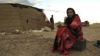Why poverty? Ljusets mödrar