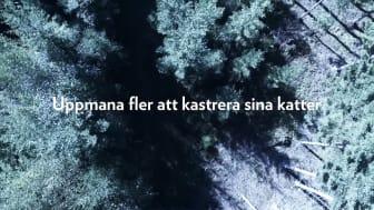 Informationskampanj #Förvarendakatt film 2