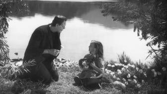 Frankenstein lär framtidens intelligenta vårdmaskiner empati