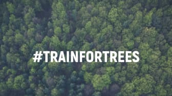 From 23 Nov to 1 Dec, 2019, Motosumo offers gyms worldwide a platform to convert calories burned in workouts into real-life trees that will be planted by the Arbor Day Foundation, as part of the #teamtrees initiative.