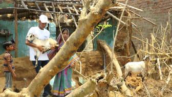 1905-WTG-Odisha-Soforthilfe-Ziegen-Rettung