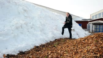 Varför lagrar Stora Nolia snö till i sommar?