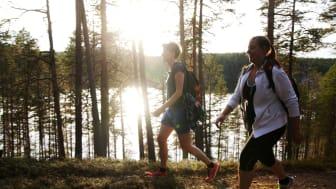 Bild från Isälvsleden mellan Vindeln och Åmsele, Västerbotten