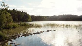 Kom och maja i Äskhult på första maj! Foto: Göran Assner
