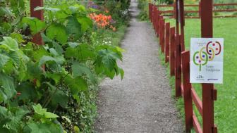 Tusen Trädgårdar