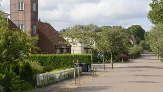 Tillsammans med mäklare ska Sjöbo kommun ylla orden livskvalitet och gott boende med innehåll. Bilen är tagne i Lövestad.