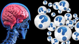 ABC om Alzheimers sjukdom: tidiga tecken och utredning.  Lena Kilander, överläkare i geriatrik och expert på frontallobsdemens, Akademiska sjukhuset/Uppsala universitet föreläser
