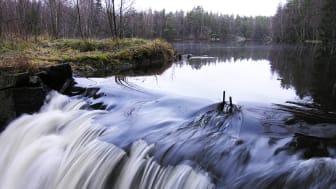 Rapportframsidesbild: Kvarndammarna i Lövsjöbäcken, en del av Lärjeåsystemet som ingår i Göteborgs nödvattensystem. Foto: Per Sander.