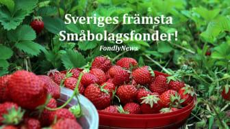 Sveriges främsta Småbolagsfonder!