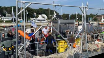 Seekuh reinigt den Meeresboden  (6)