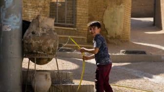 Nye studier: Minoritetsstatus viktig for flukten fra Irak og Syria, og for returen