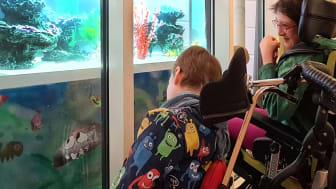 Beliebter Ort im Kinderhospiz Bärenherz - der Platz vor dem Aquarium
