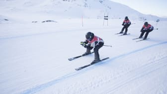 Hemsedal Up and Down
