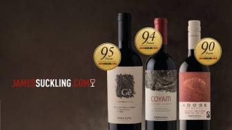 Toppbetyg till Emilianas ekologiska viner