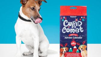 Cupid & Comet julekalender til hund