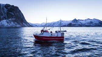 Skreifishing outside Gryllefjord
