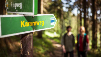 Kammweg_Foto TVE_Rene Gaens.jpg